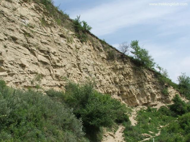 7048 - Round rocks from Viisoara