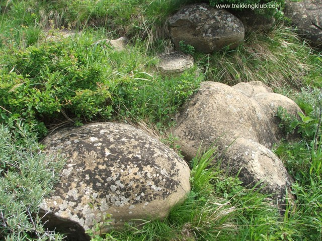 7053 - Round rocks from Viisoara