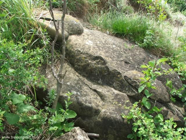 7057 - Round rocks from Viisoara