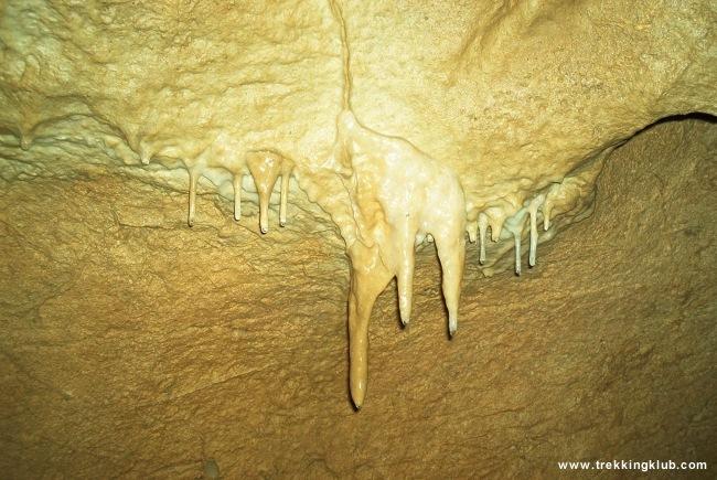 Flacara Cave - Flacara Cave