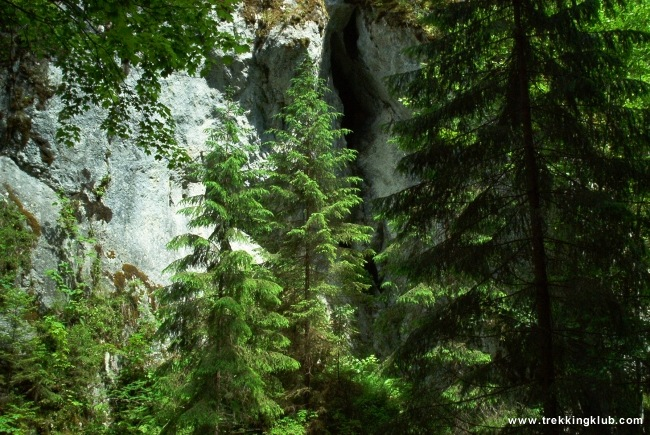 Lapos Gorges - Lapos Gorges