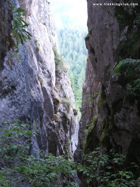 Above Peter Baci cave - Peter Baci
