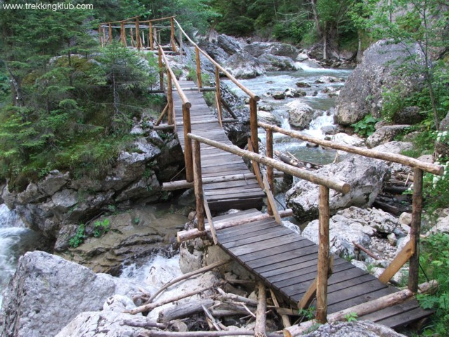 Wooden bridge over the Bicajel brook - Surducului Stone