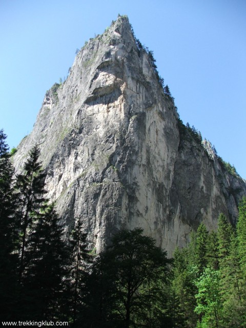 Watchtower - Surducului Stone