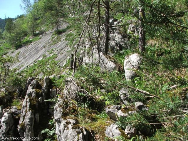 Rajztábla - Szurdok-kő