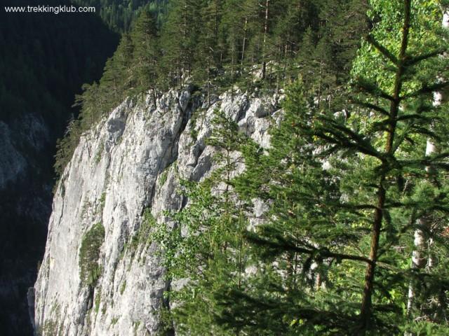 Look-out point of Surducului Stone - Surducului Stone