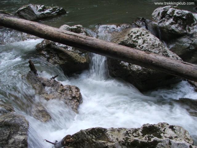 Bicajel brook - Surducului Stone