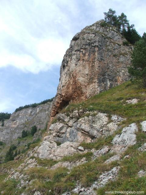 Rock near the Fairy Garden - Fairy Garden
