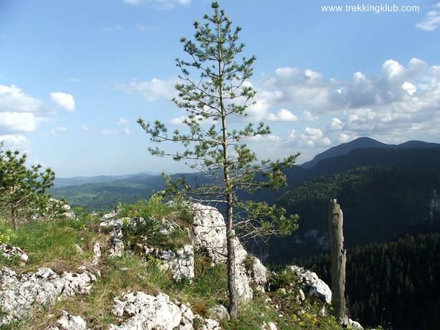 Bardócz-kő - Bardócz-kő
