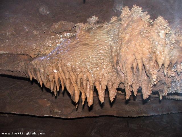Poarta Alunului barlang - Poarta Alunului barlang