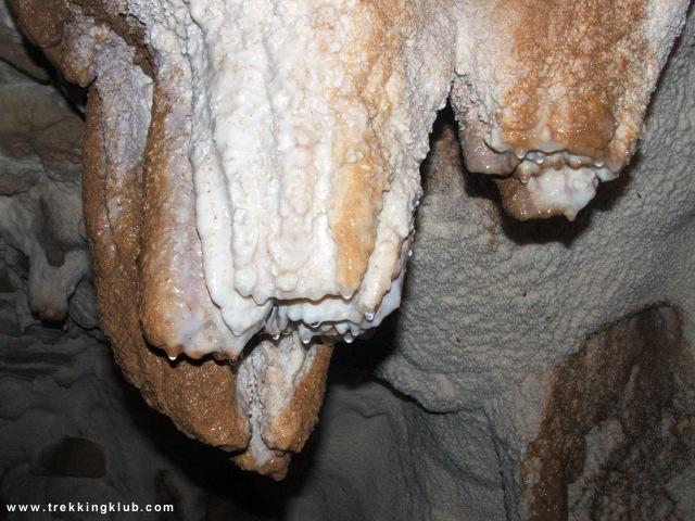 Poarta Alunului cave - Poarta Alunului cave