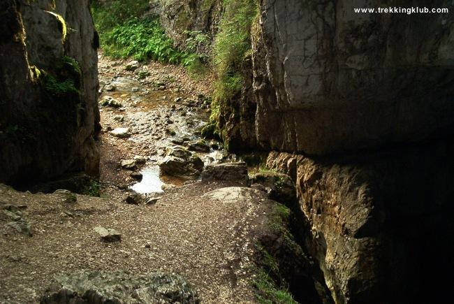 Caput cave - Cetatile Ponorului