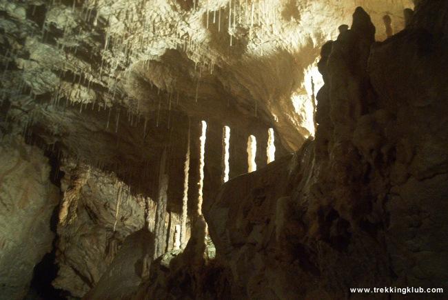 Bear's Cave - Bear's Cave