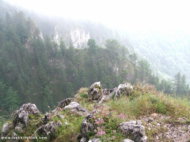 Boga valley - Sura Boghii cave