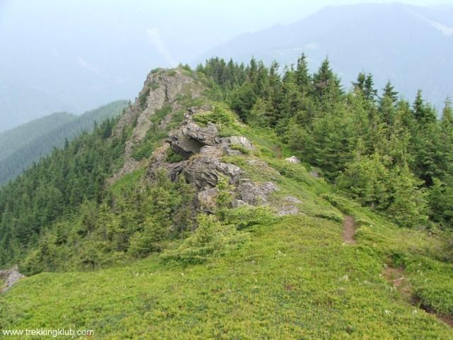 Path on the ridge - Pietrosu Bistritei