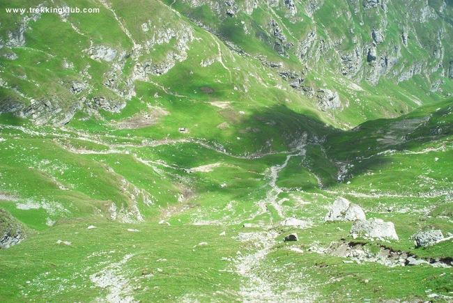 Valea Cerbului - Valea Cerbului