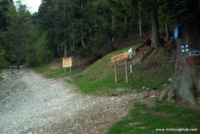 Intersectie trasee - Cascada Urlatoarea