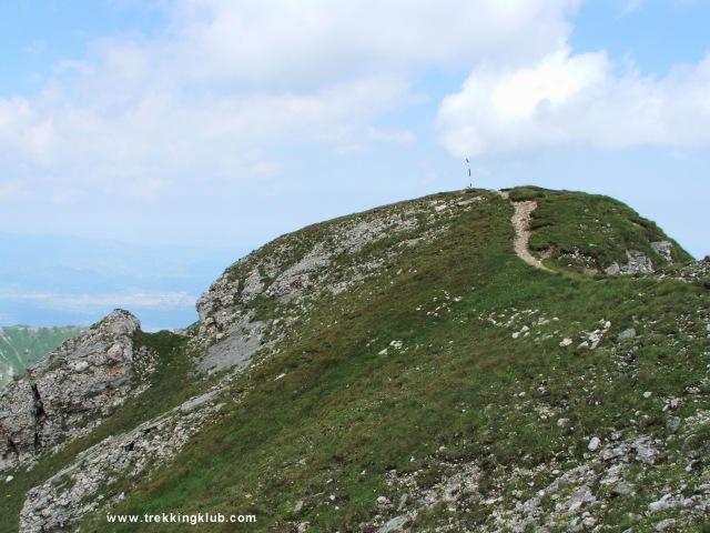 Varful Bucsoiu (2492 m) - Bucsoiu