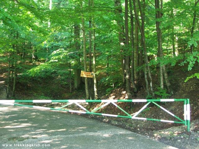 Bejárat az erdőbe, a Taverna Sarbului mellett - Vanturis vízesés