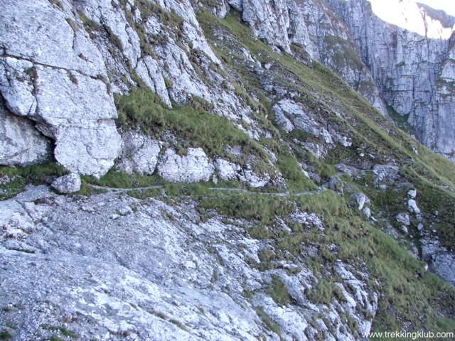 Goats Trail - Goats Trail