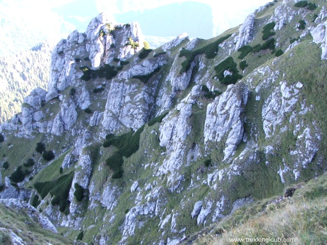 9674 - Goats Trail