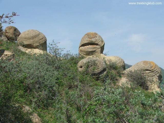 Gömbölyű kövek a homoktövis között - Gömbölyű kövek