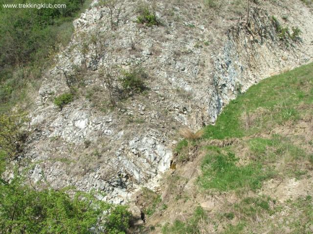 Pietriceaua ridge - Pietriceaua