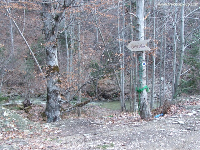 Spre cascada - Cascada Casoca