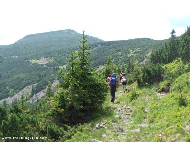 Drumul Mariei Tereze - Varful Pietrosul