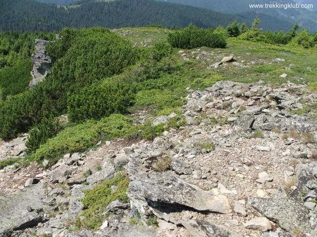 Tamó-tető - Tamó sziklavára