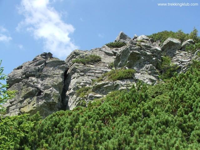 Under the Tamau peak - Tamau