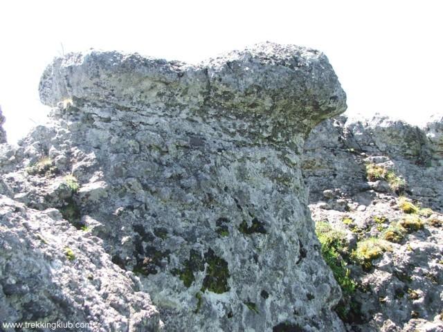 Mushroom shaped rock - Tamau