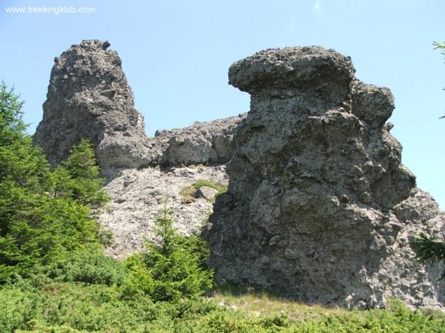 Cliffs - Tamau