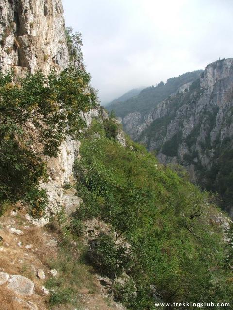 Prisacinei-szoros - Salitrari