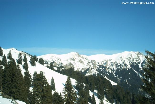 Gropsoarele-Zaganu gerinc - Vörös-havas