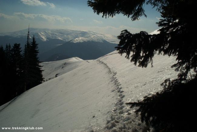 Vörös-havas - Vörös-havas