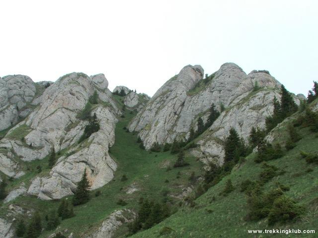 Zaganu felé - Gropsoarele-Zaganu