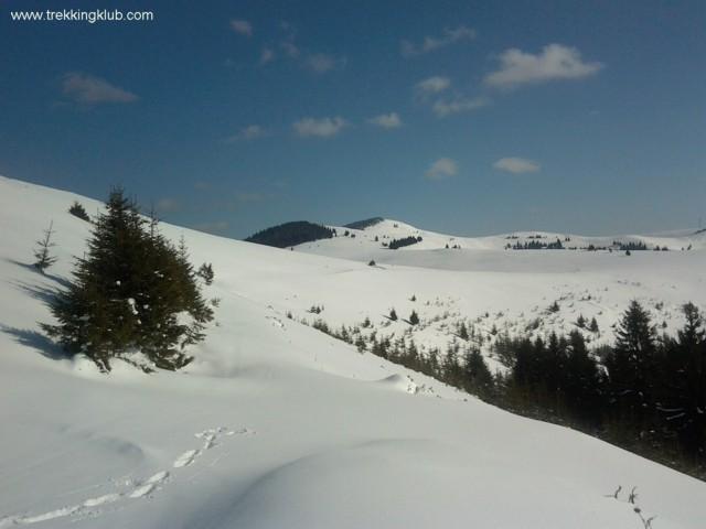 Breeze Peak - Hay Road