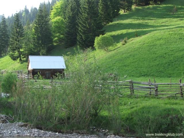 Salas de vara - Jávárdi