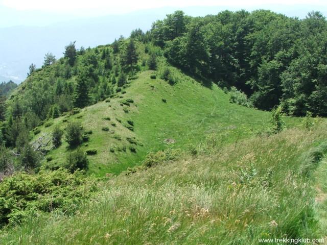 8736 - Cozia peak