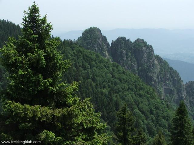 8738 - Cozia peak