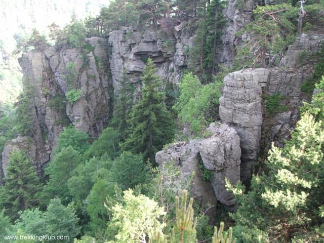 8775 - Cozia peak