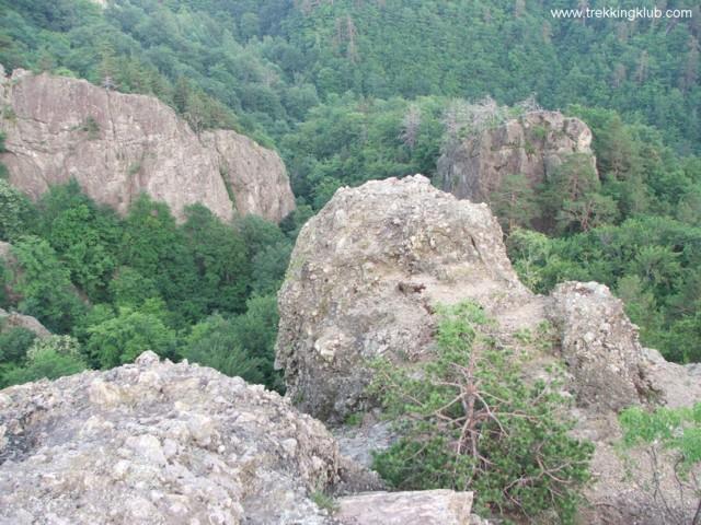 8802 - Cozia peak