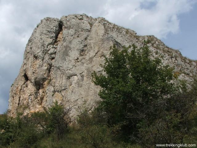 6722 - Cetatea Liteni