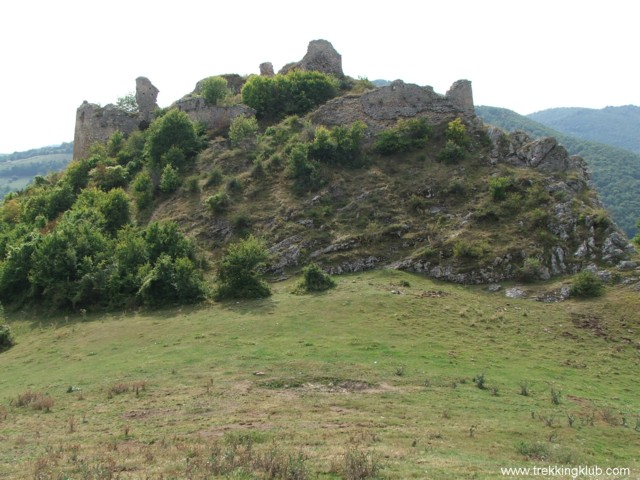 6731 - Cetatea Liteni