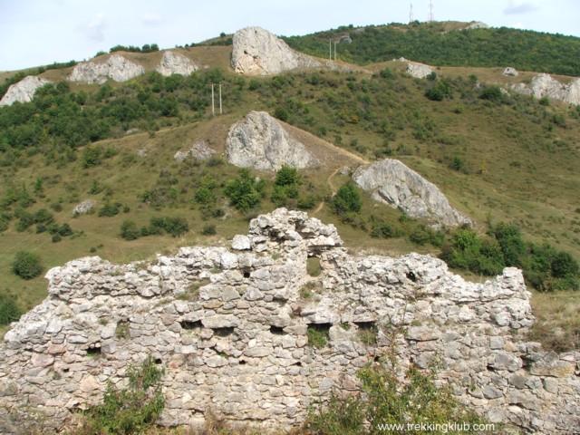 6734 - Cetatea Liteni