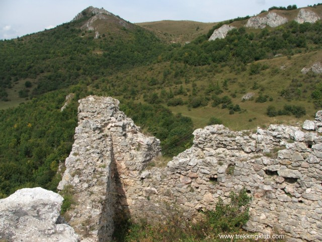 6735 - Cetatea Liteni