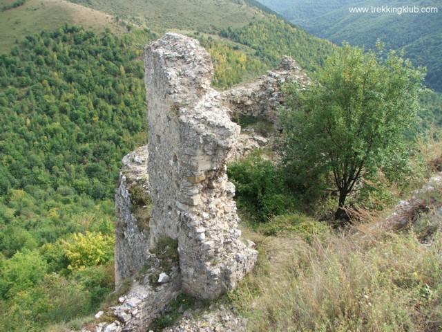 6741 - Cetatea Liteni