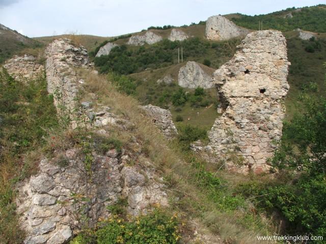 6744 - Cetatea Liteni