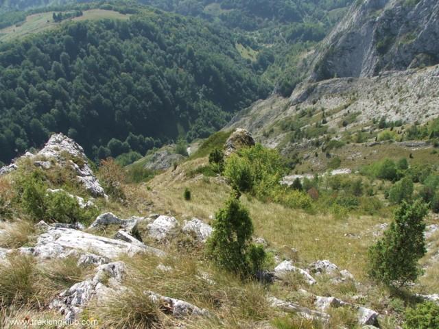 4496 - Bélavár